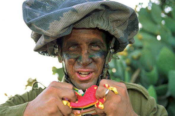 חייל נוגס במרמלדה