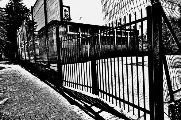 גדר שחור לבן