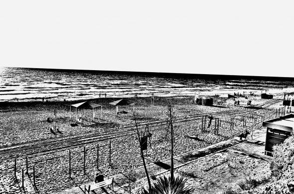 נוף שחור לבן