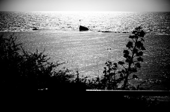 חוף ים שחור לבן
